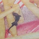 Dead lizard served with french fries at McDonalds outlet in Kolkata, complaint lodged