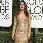 Golden Globes 2017: Priyanka Chopra Wins Red Carpet In Ralph Lauren, Presents Award – NDTV Movies
