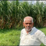 Ground Report I Rs 25 Hike In Sugarcane Msp 'too Less' For West Up Farmers But May Still Vote For Bjp Over Law, Order