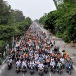 Communal Flames in Mangaluru May Hijack Real Issues in BJP's Race to Bengaluru